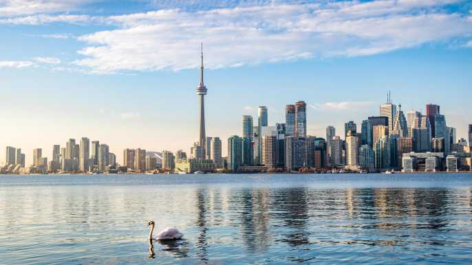 Toronto 2021 Los 10 Mejores Tours Y Actividades Con Fotos Cosas Que Hacer En Toronto Canadá Getyourguide
