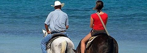 Private Horseback Beach Riding in the Grand Cayman
