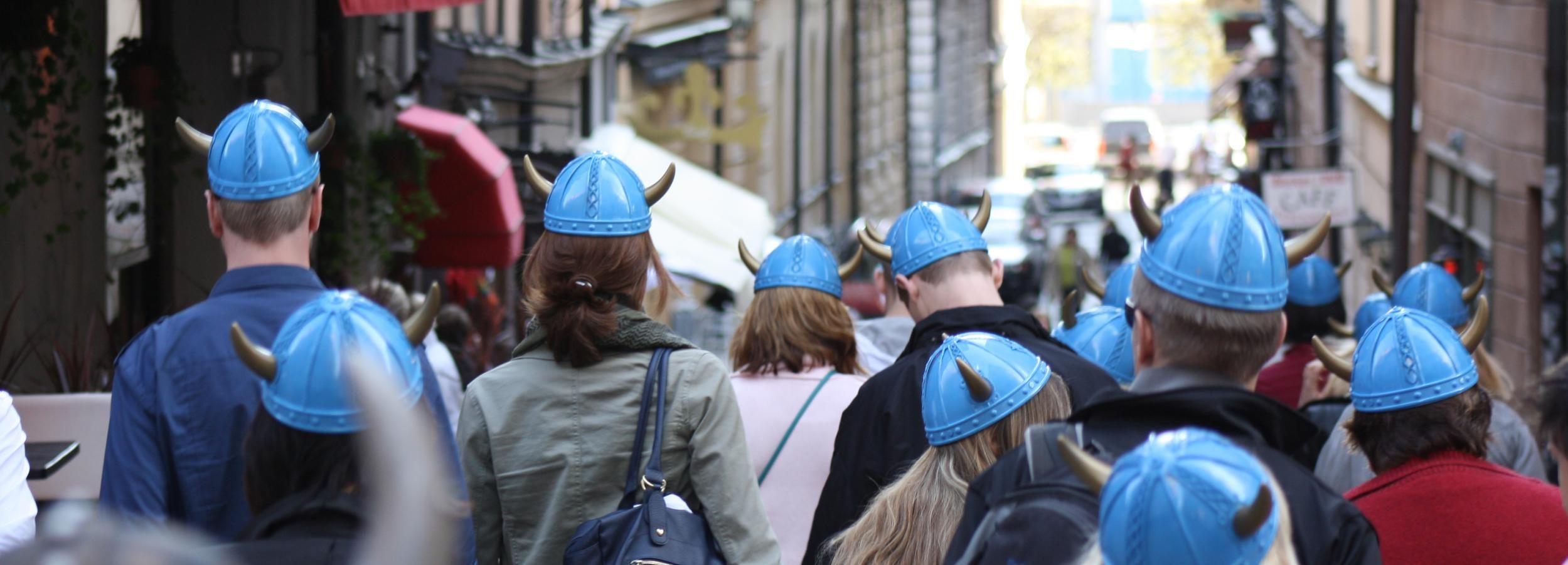 Giro a piedi di Viking Privilege di 90 minuti a Stoccolma