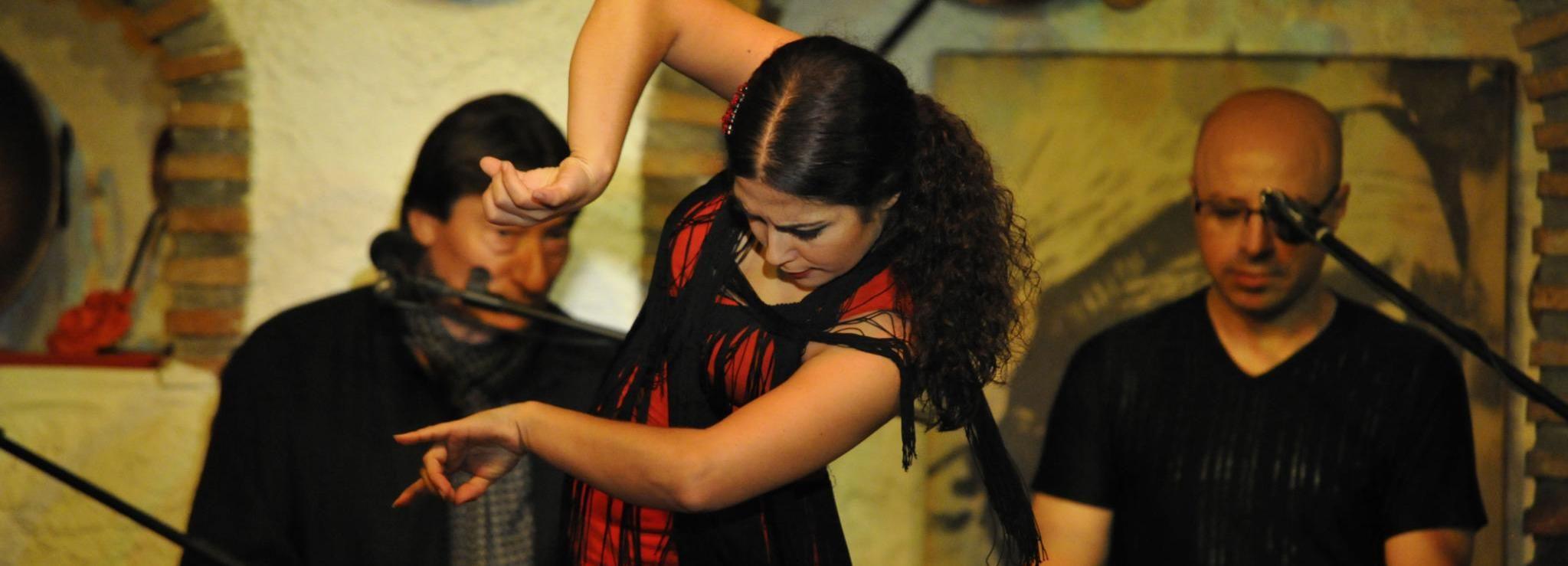 Granada: Führung durch die Alhambra & Flamenco-Show