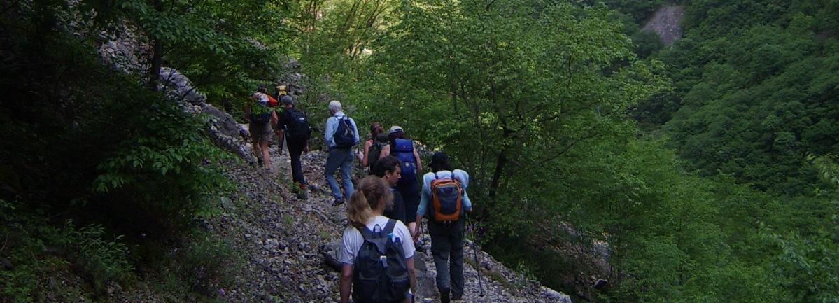 Vikos Gorge Full-Day Guided Hike