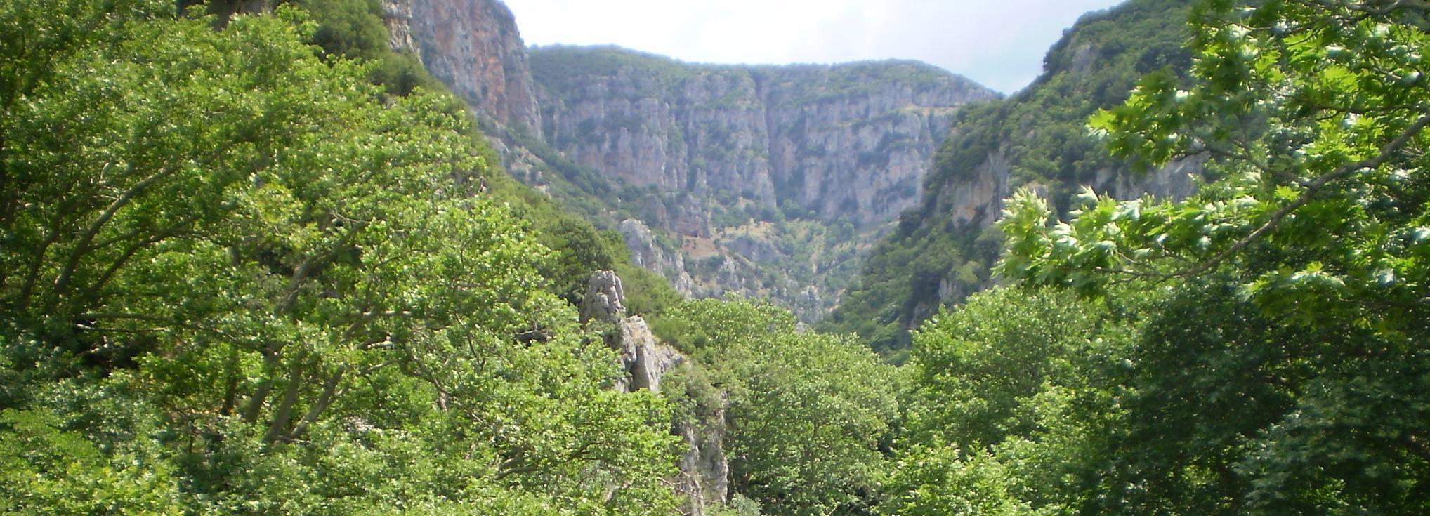 Vikos Gorge Aristi to Klidonia Bridge 3-Hour Hike