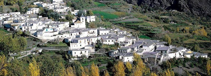 Alpujarras: Tagestour zu historischen Bergdörfern