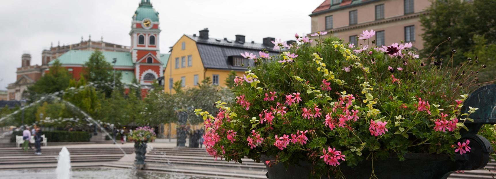Sindrome di Stoccolma: tour a piedi privato