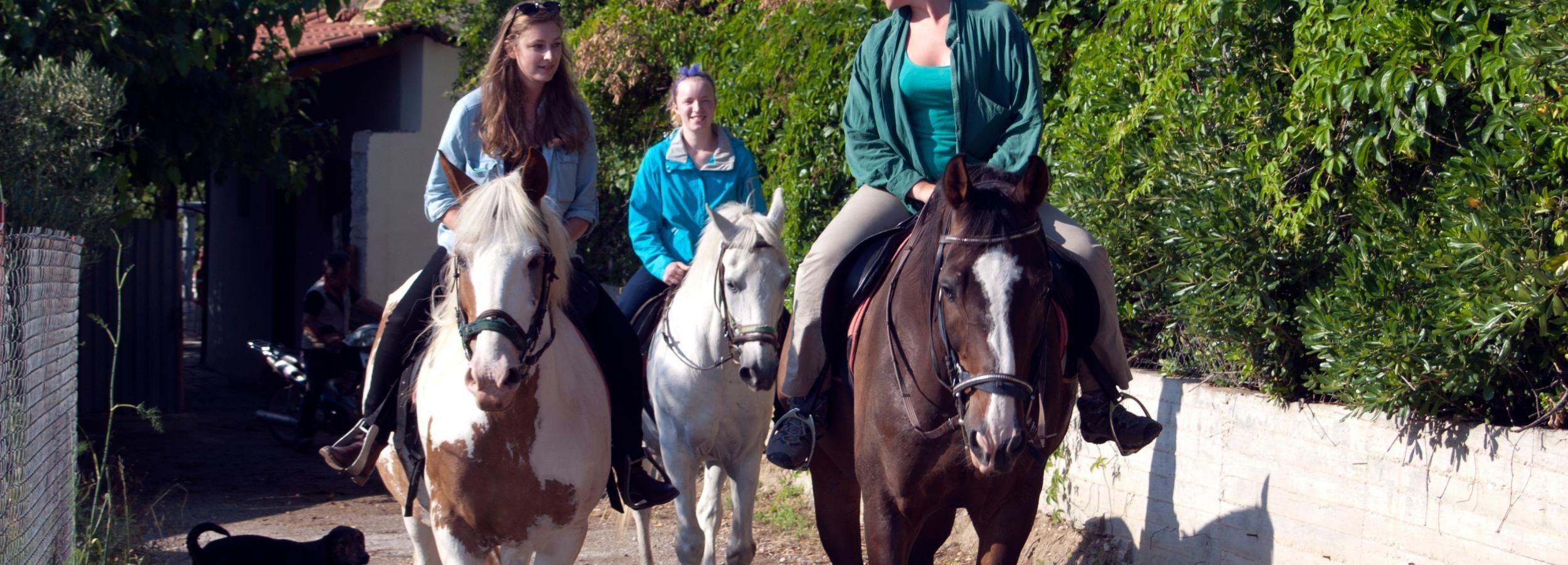 De Nauplie: Équitation à Nauplie