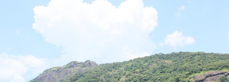 Privada de día completo colina de Nandi Excursión con almuerzo