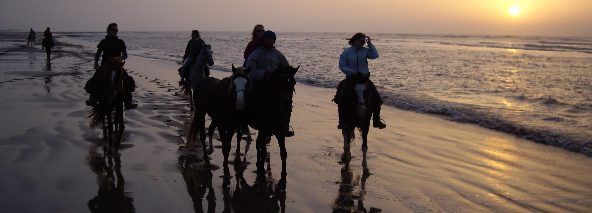 Essaouira: Full-Day Horse Riding Tour with Lunch