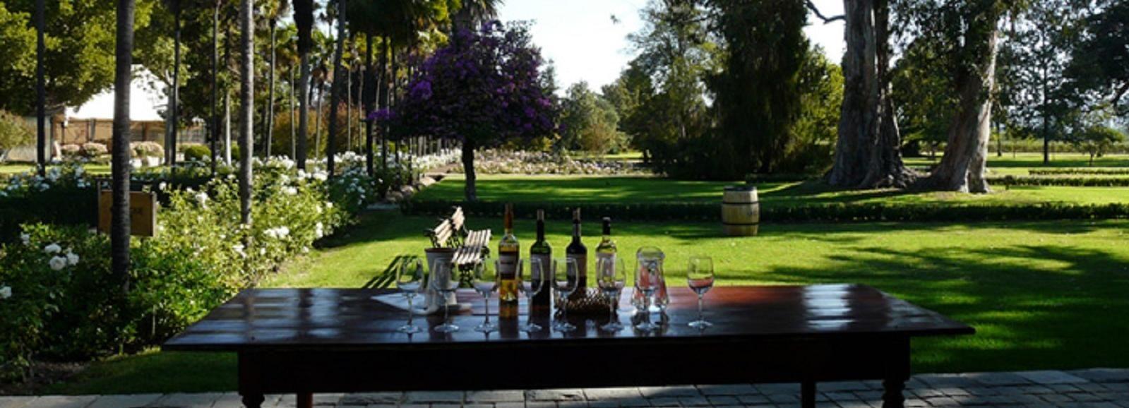 Private Tour: Premium Undurraga Vineyard Experience