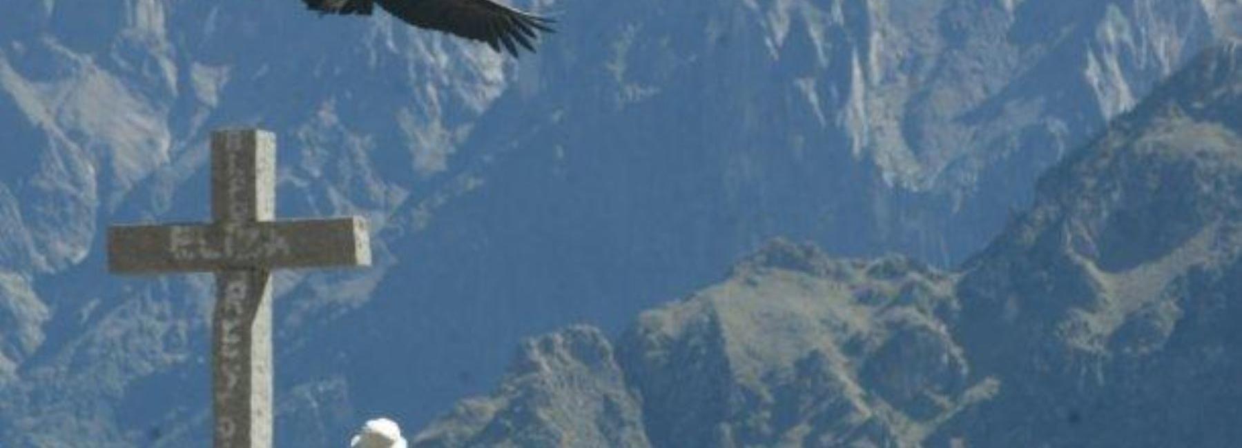 Vale do Colca: Excursão Guiada de 1 Dia saindo de Arequipa