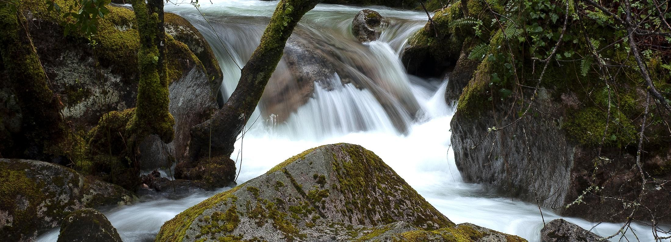 Peneda-Gerês National Park Full-Day Tour