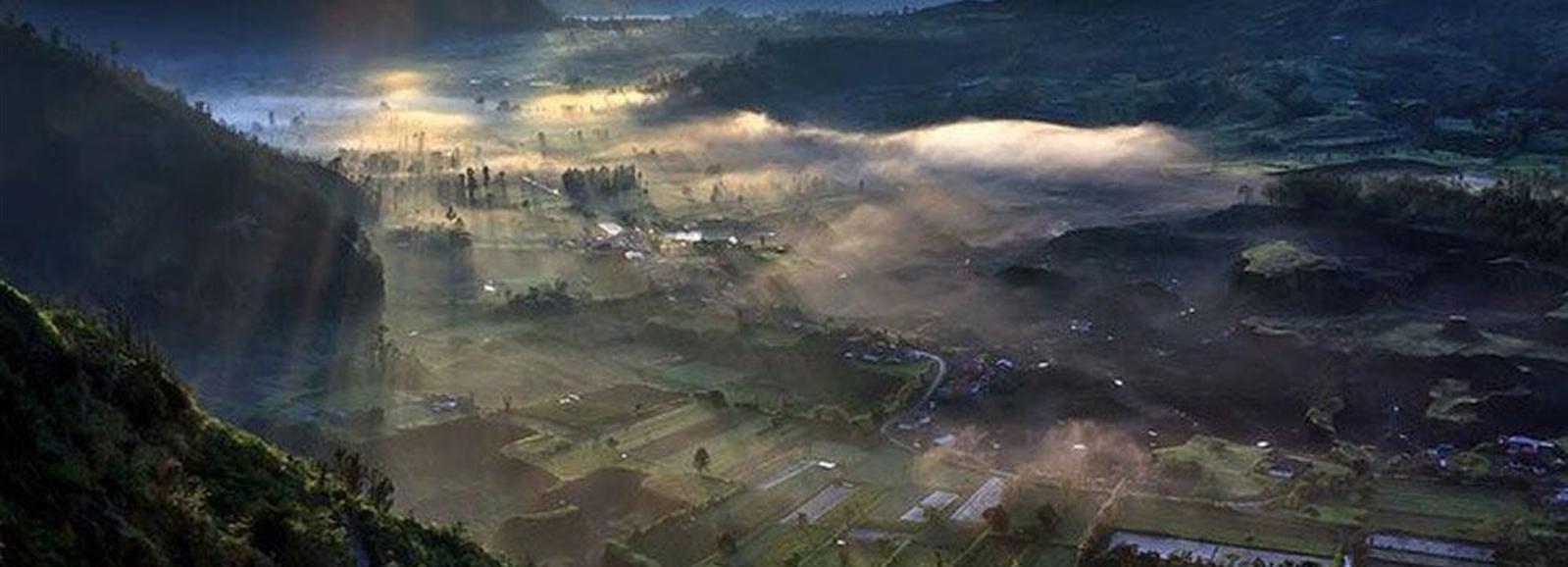 Bali: Best Sunrise Spots & Ubud Monkey Forest Private Tour
