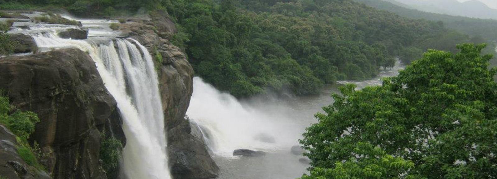 Excursión de la cascada de Athirappilly con almuerzo de Cochin