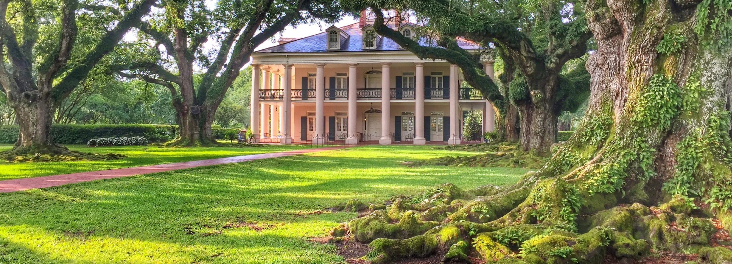 Nueva Orleans: tour por una plantación de robles