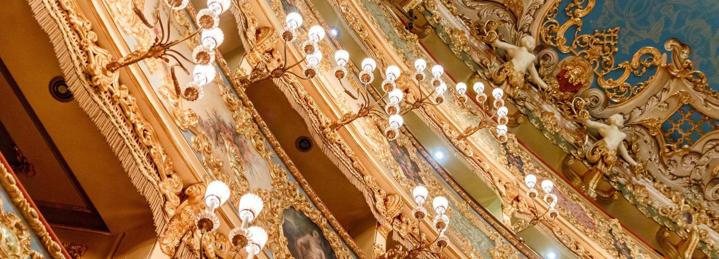 Teatro La Fenice: tour guidato a Venezia