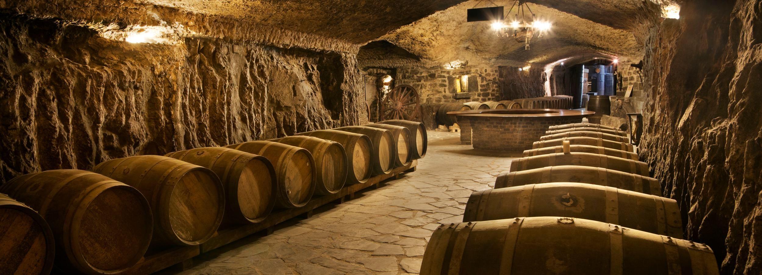 From San Sebastian: La Rioja Wine Cellar & Tasting Tour