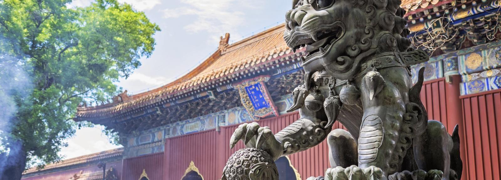 Pechino: Yonghe Gong, Olympic Green, zoo e tour degli hutong