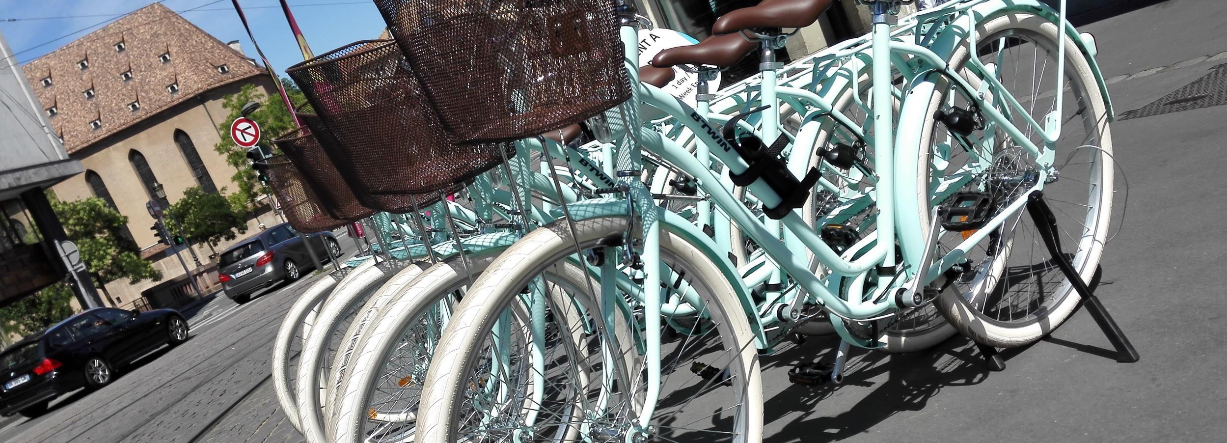 Strasbourg: 1-Day Bike Rental