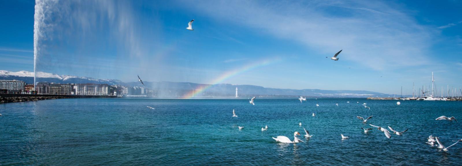 Genève stadstour en boottocht