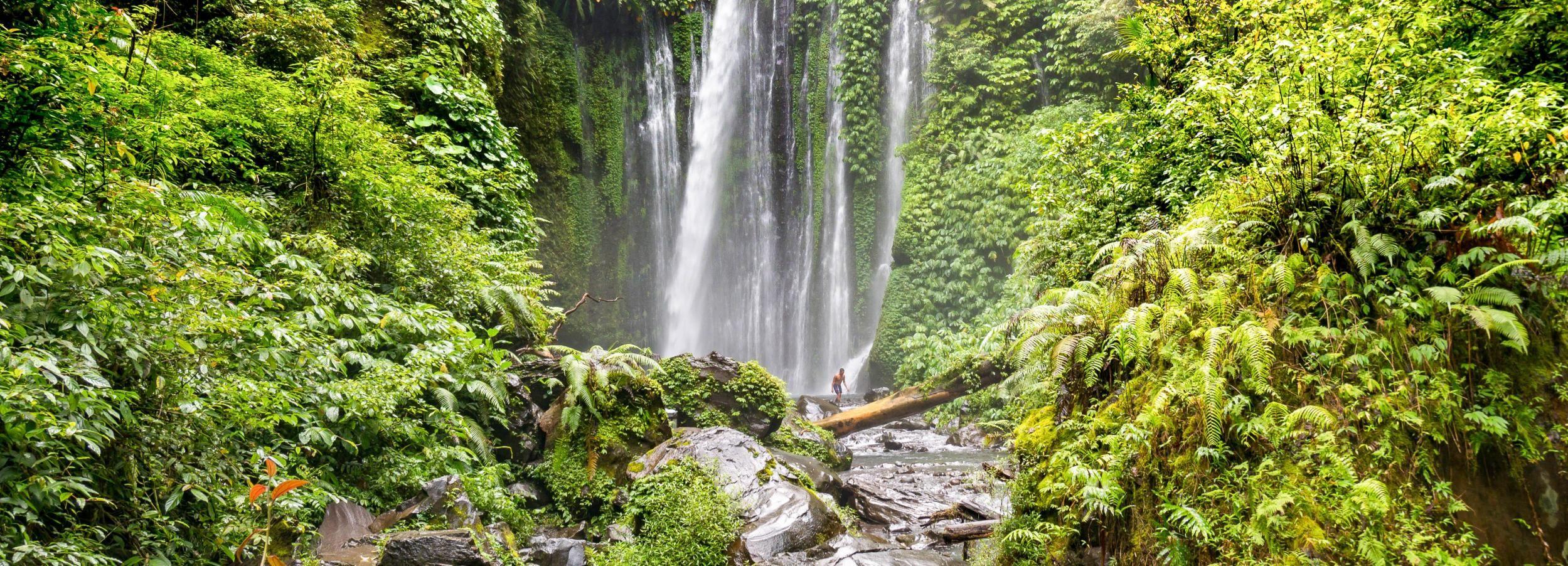 Trekkingtour zu den Wasserfällen Tiu Kelep und Sendang Gile