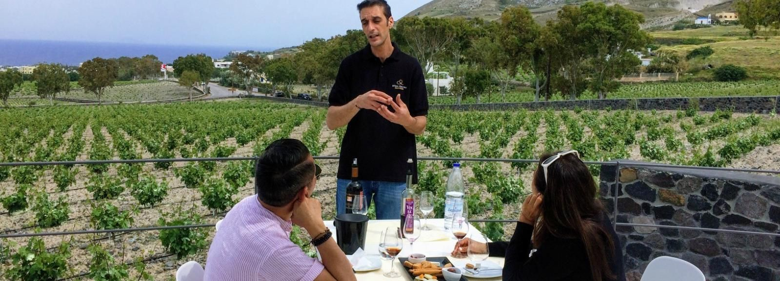 Private Group Visit to Akrotiri & 3 Wineries with Tastings