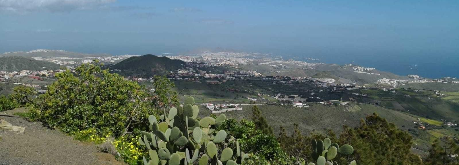 Från Las Palmas: Bandama-kratern och botaniska trädgården