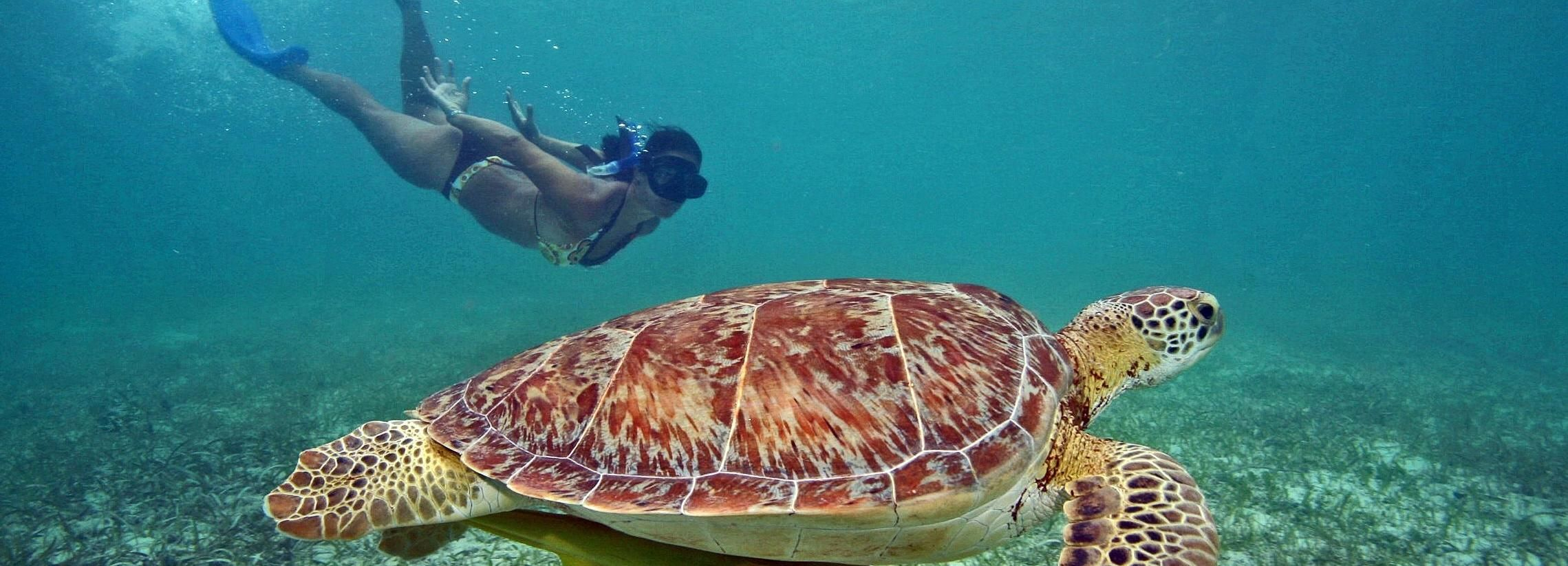 From Bali: Private 3-Day Gili Islands Tour with Snorkeling