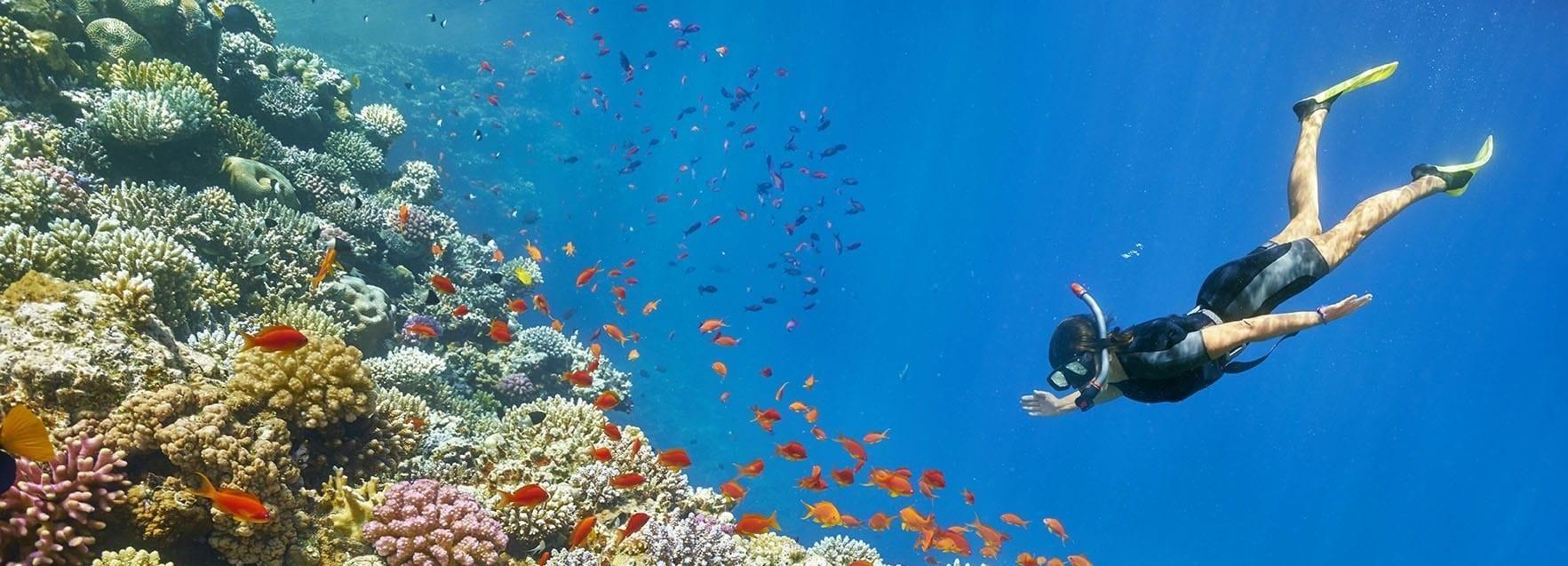 Muscat: 2-Hour Snorkeling Tour