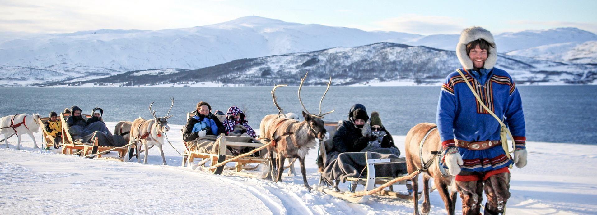Tromsø: Sleerijden & rendieren voederen met een Sami gids