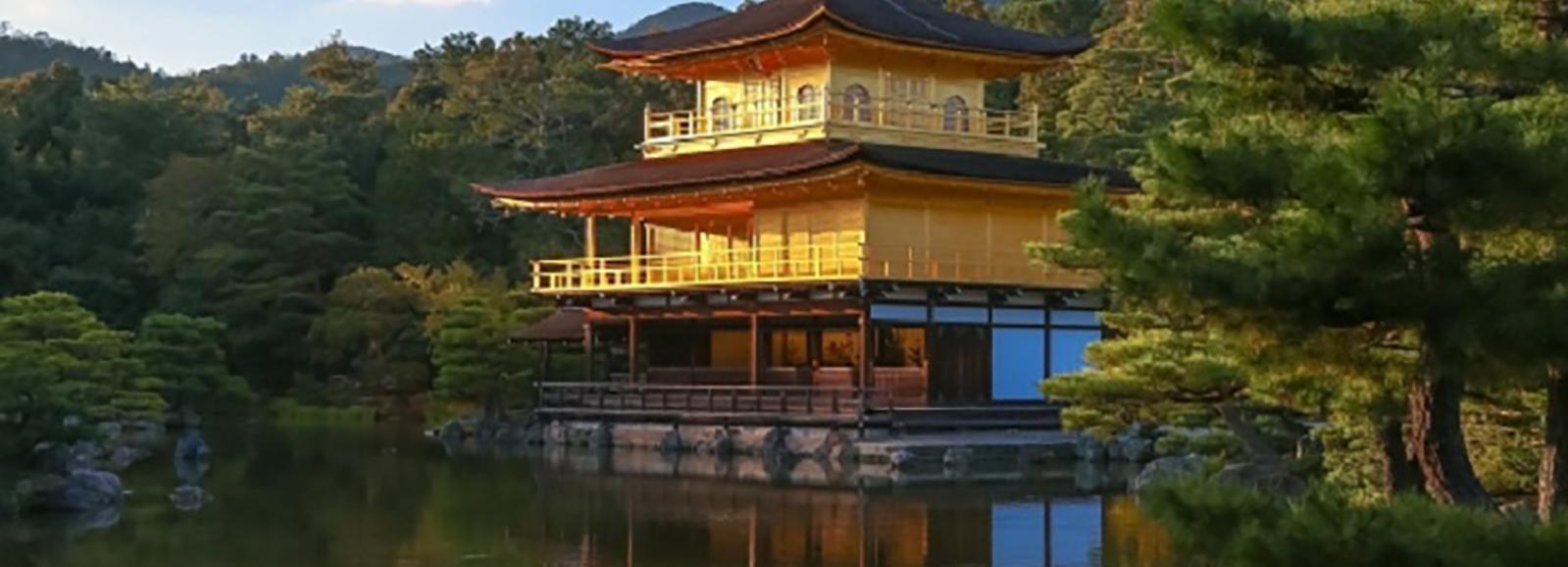 Desde Osaka/Kioto: tour de 1 día en autobús a Kioto y Nara