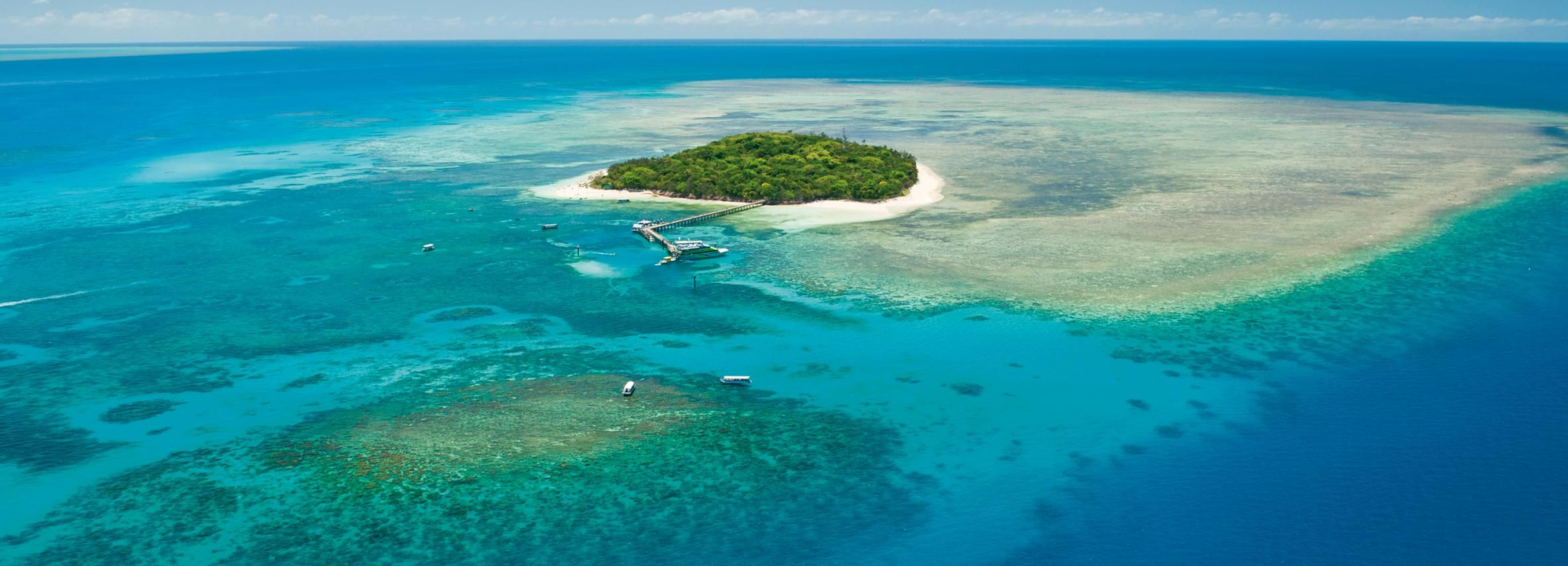 Cairns: Scenic Reef Plane Flight and Green Island Cruise