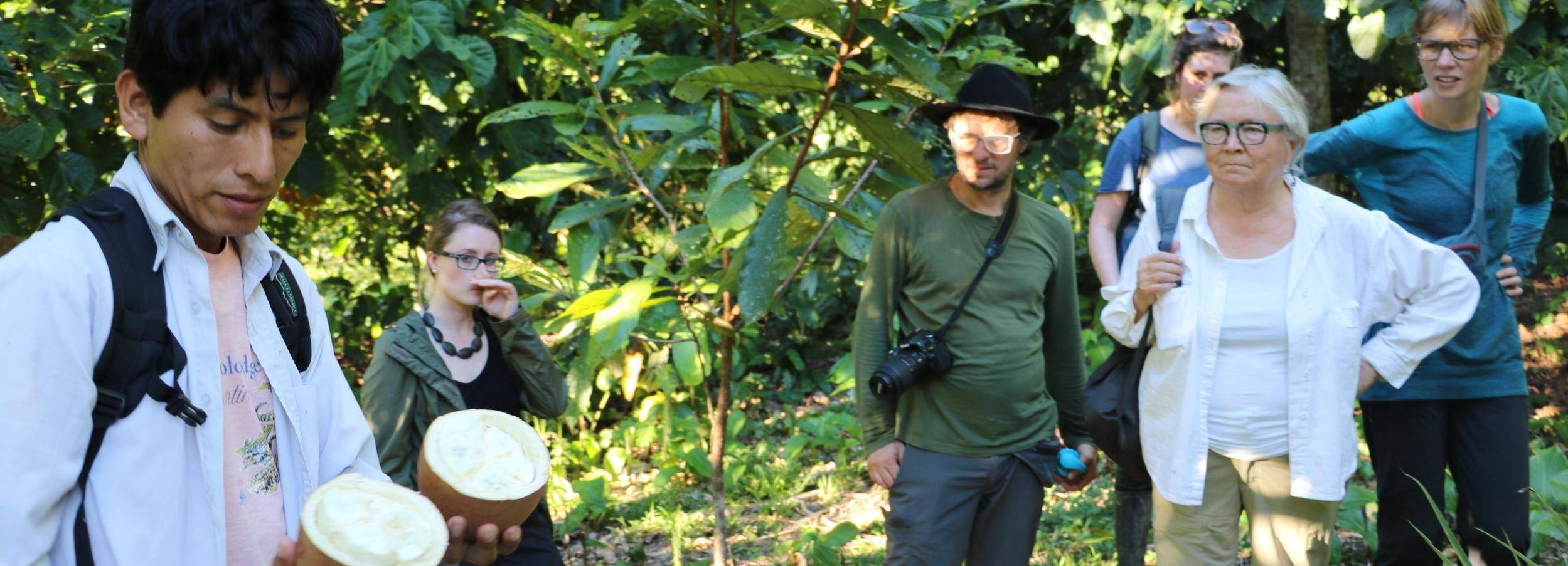 Amazônia Amazônica de Tambopata por Três Dias / Duas Noites