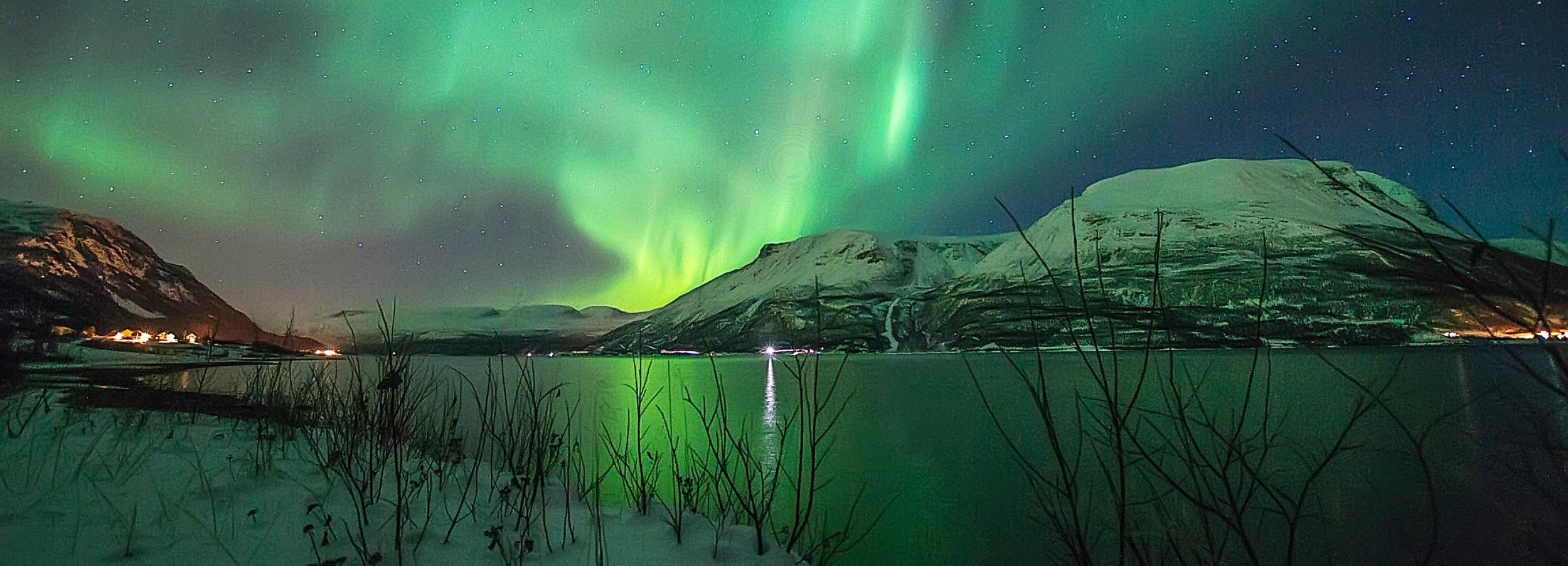 Tromsø: Noorderlicht-zoektocht (6 tot 8 uur) met foto's