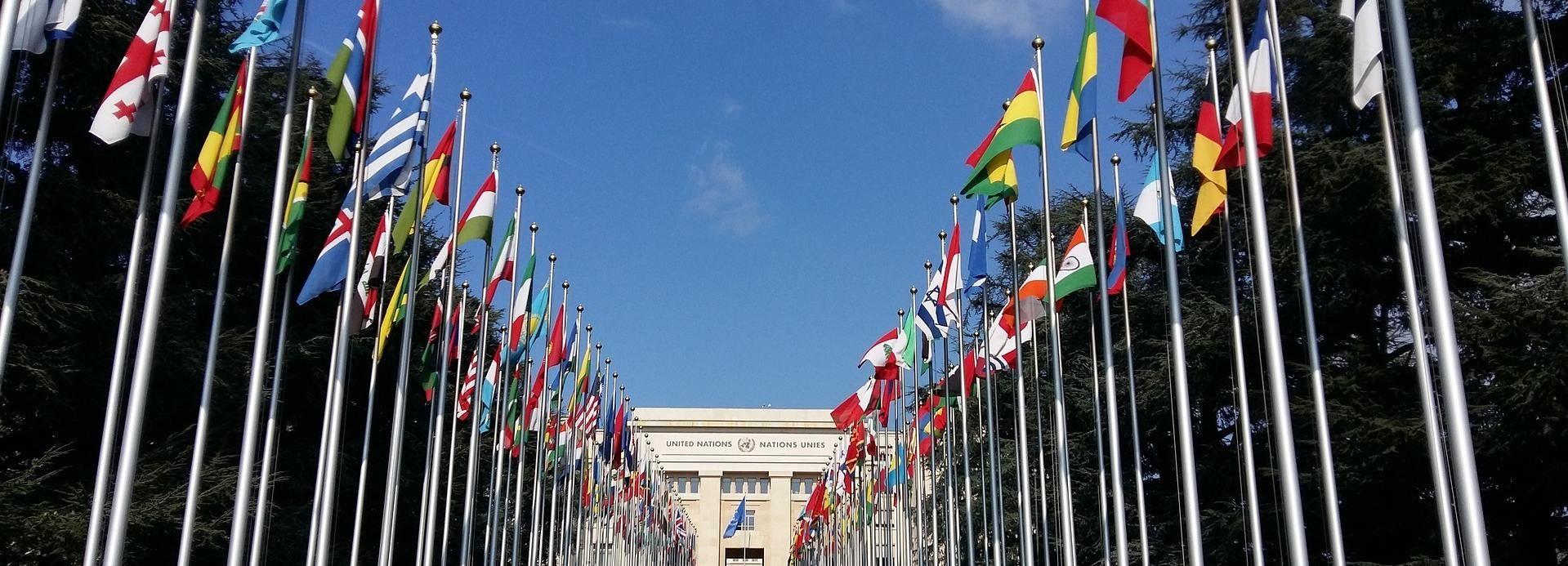 Genève: tour van 2 uur door internationale wijken en centrum