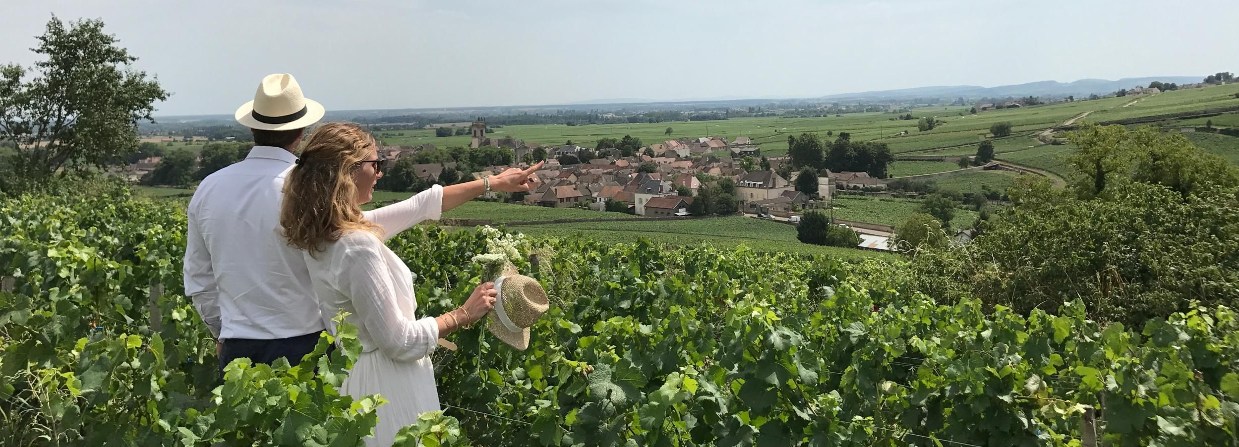Beaune: Small-Group Wine Tastings and Lunch Tour