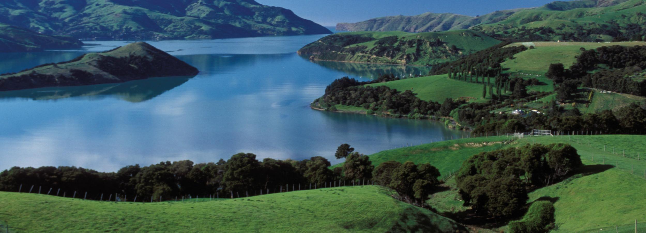 Akaroa-dagtour met havencruise vanuit Christchurch