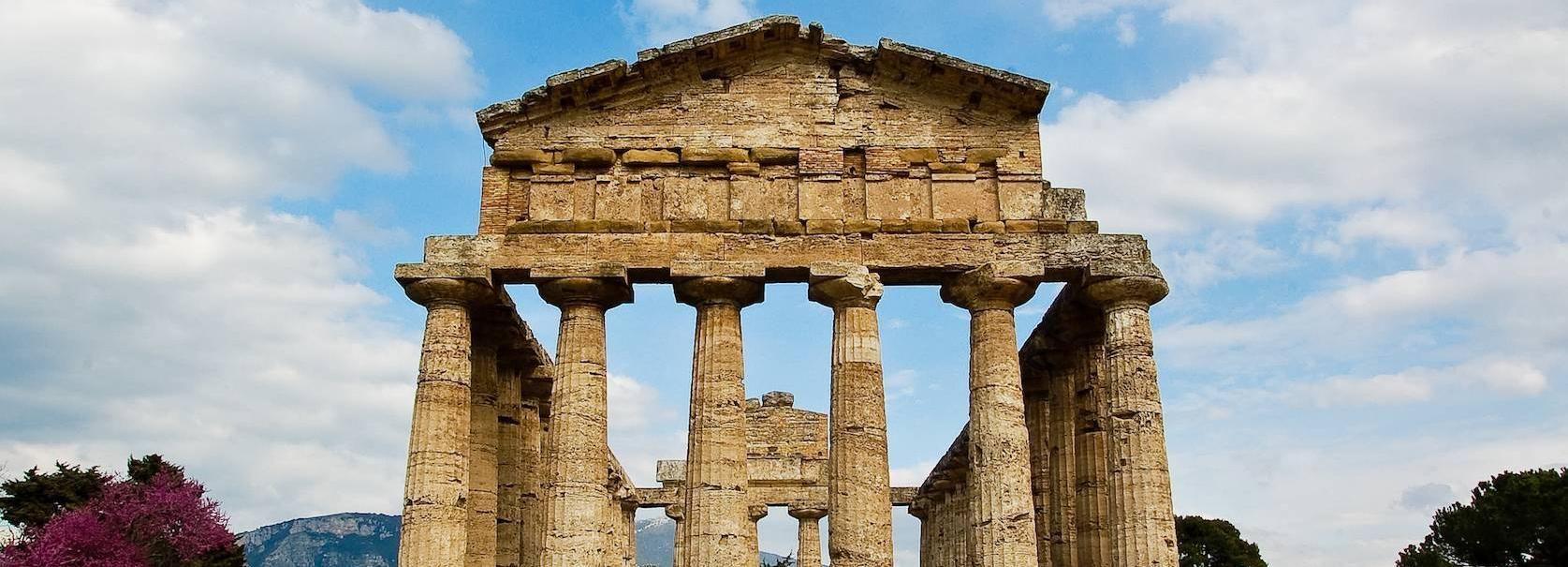 De Sorrente: visite de la ferme de Paestum et Buffalo