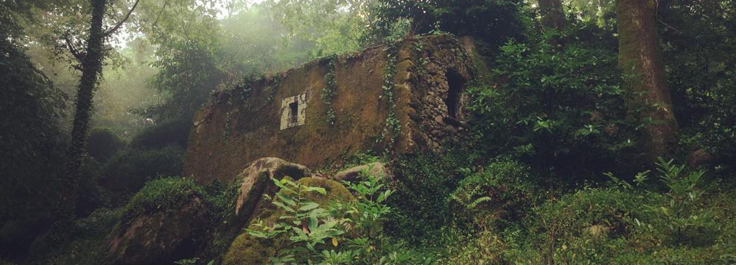 Visita guiada a Sintra: vida e morte no Convento dos Capuchos