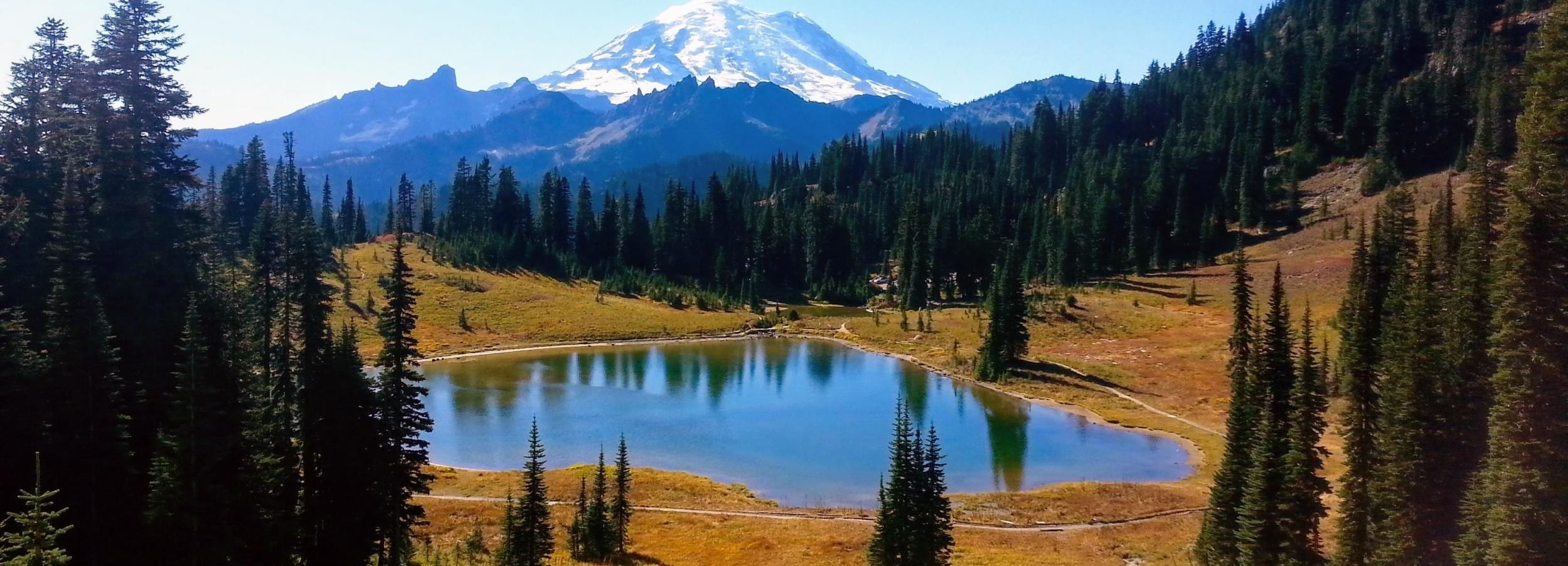 Seattle All-Inclusive: Hike Mt. Rainier and Wine Tasting