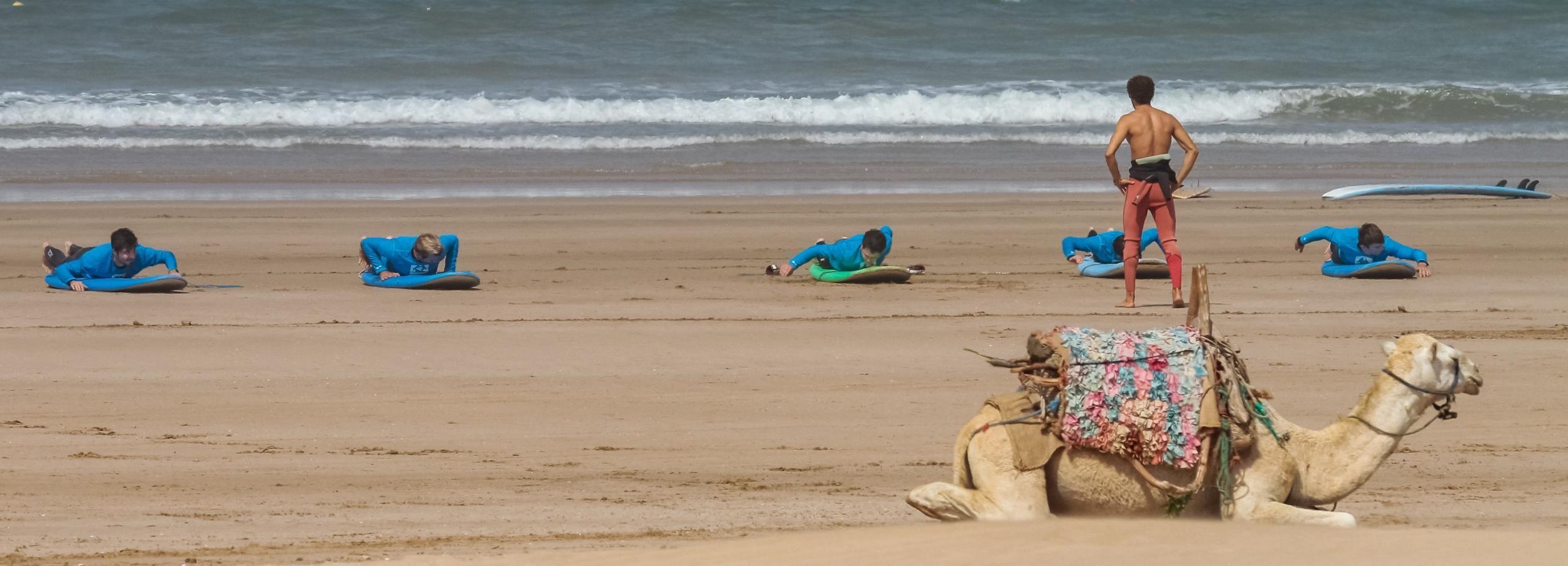 From Marrakesh: Essaouira Surfing Day Trip