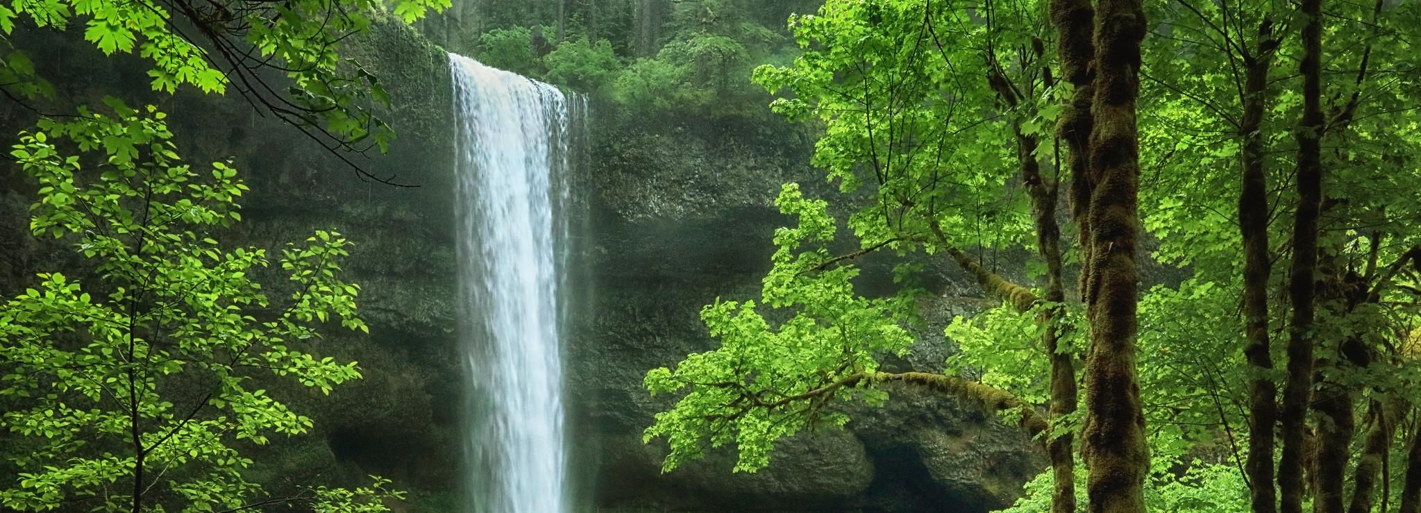 Portland: All-Inclusive Willamette Valley Waterfalls & Wine