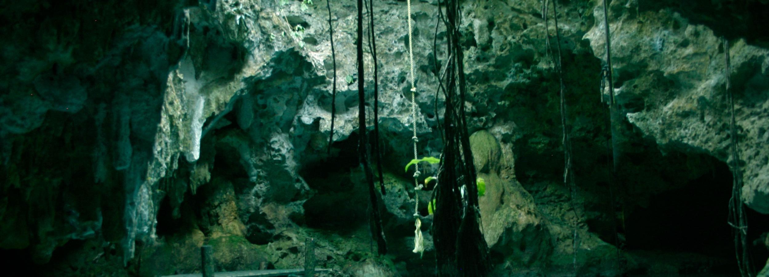 Tour de 1/2 día esnórquel y cenotes subterráneos desde Tulum
