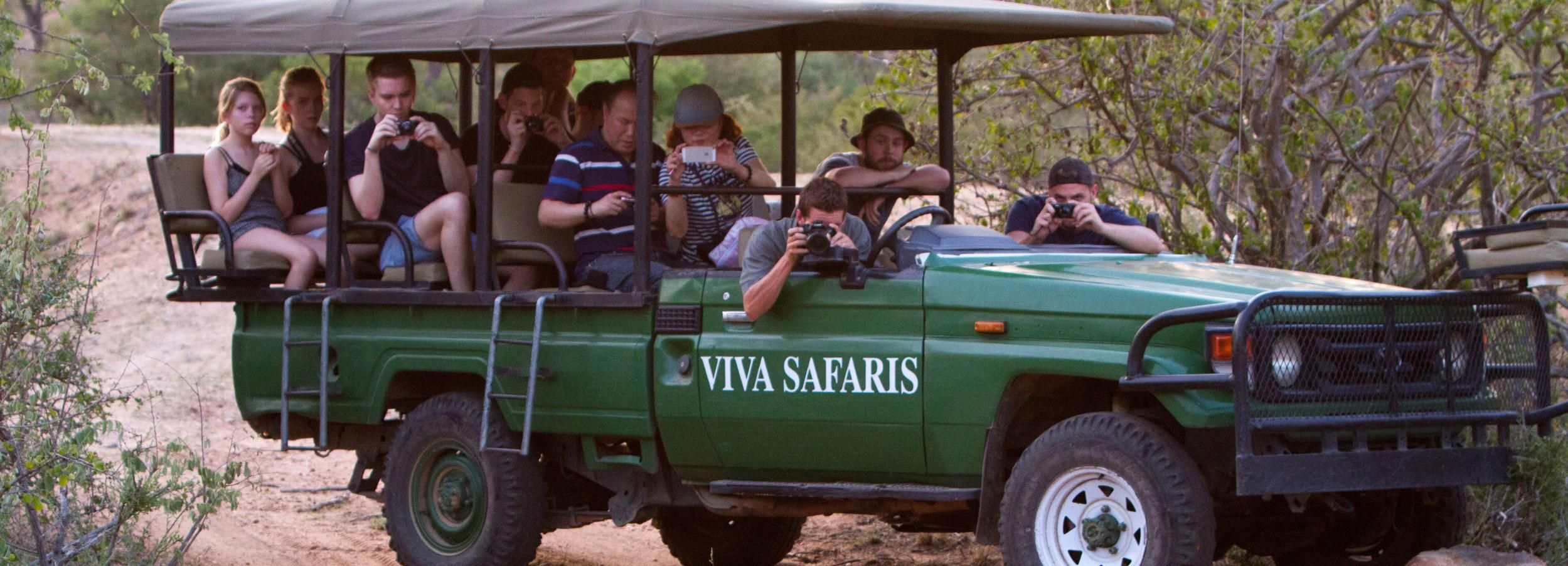 Ab Johannesburg: 3-tägige Safari im Kruger-Nationalpark