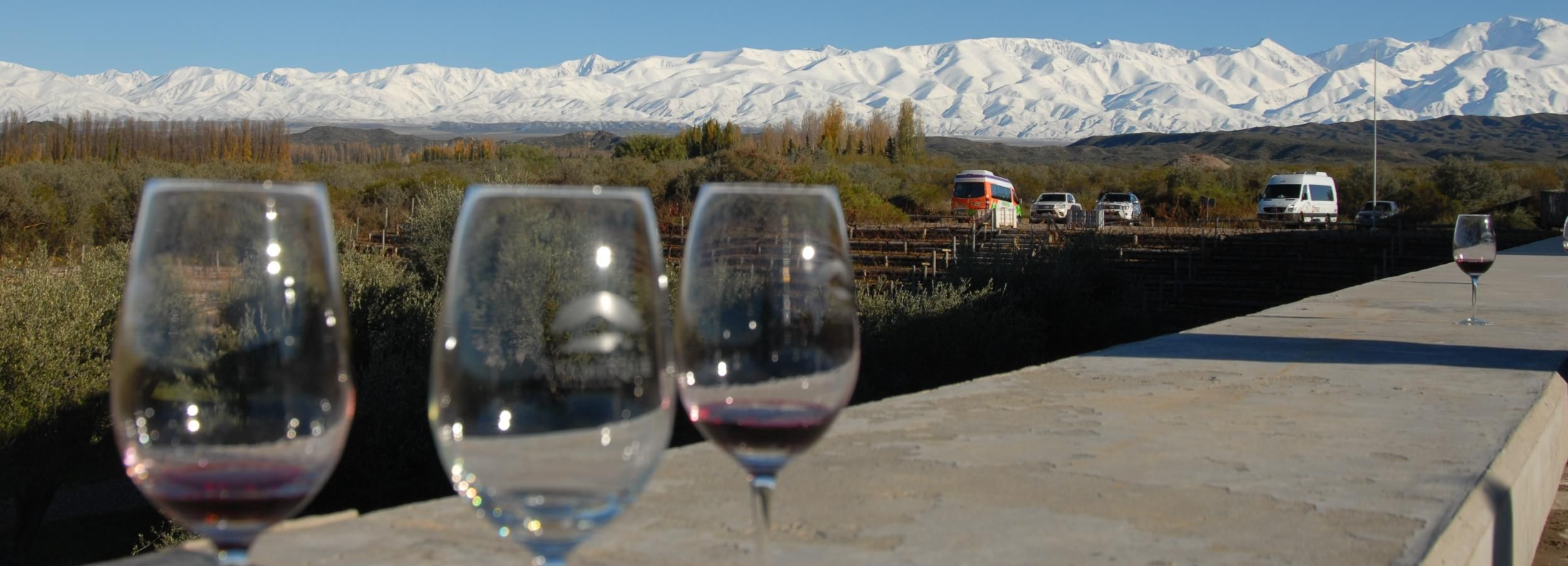 Valle de Uco: Private Full Day Wine Tour with 3-Course Lunch
