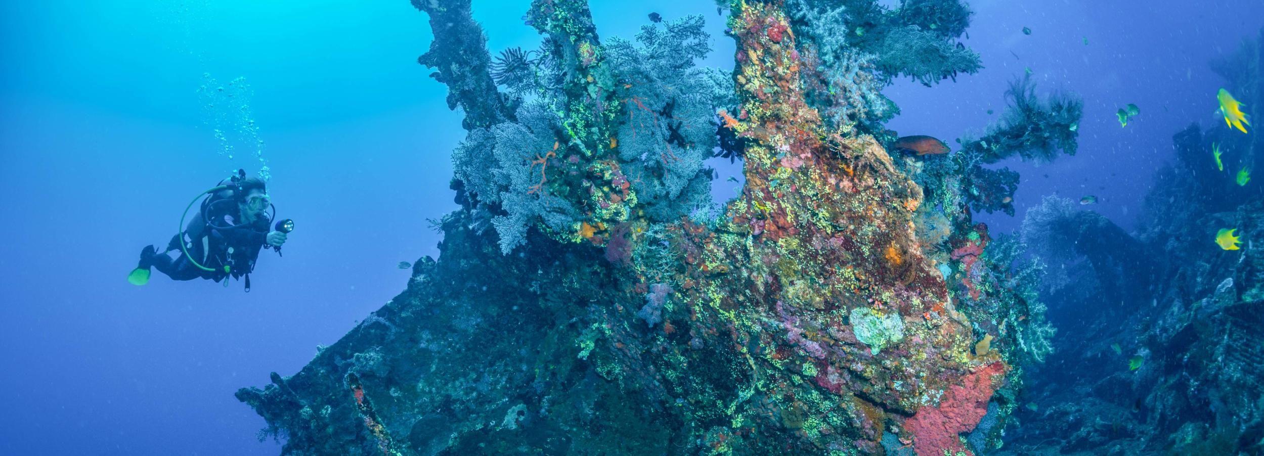 Bali: Tulamben Bay and the USAT Liberty Wreck Dive