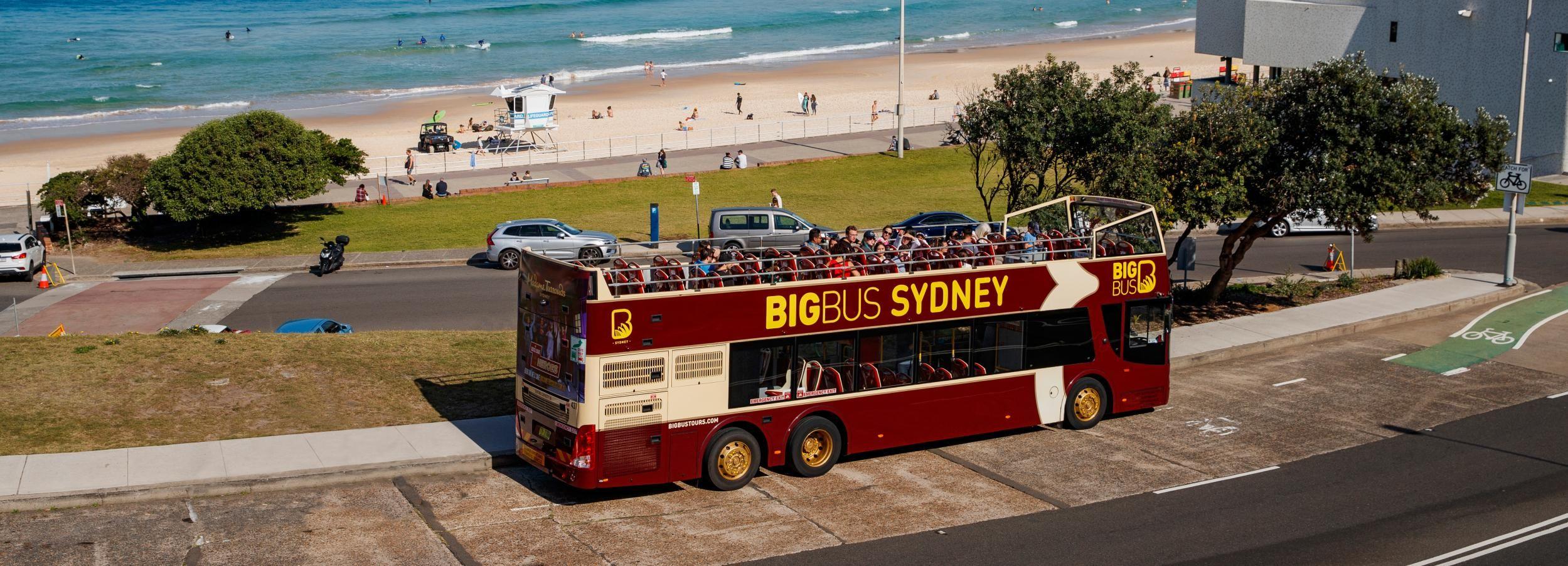 Sydney: pass per autobus turistico, crociera e attrazioni
