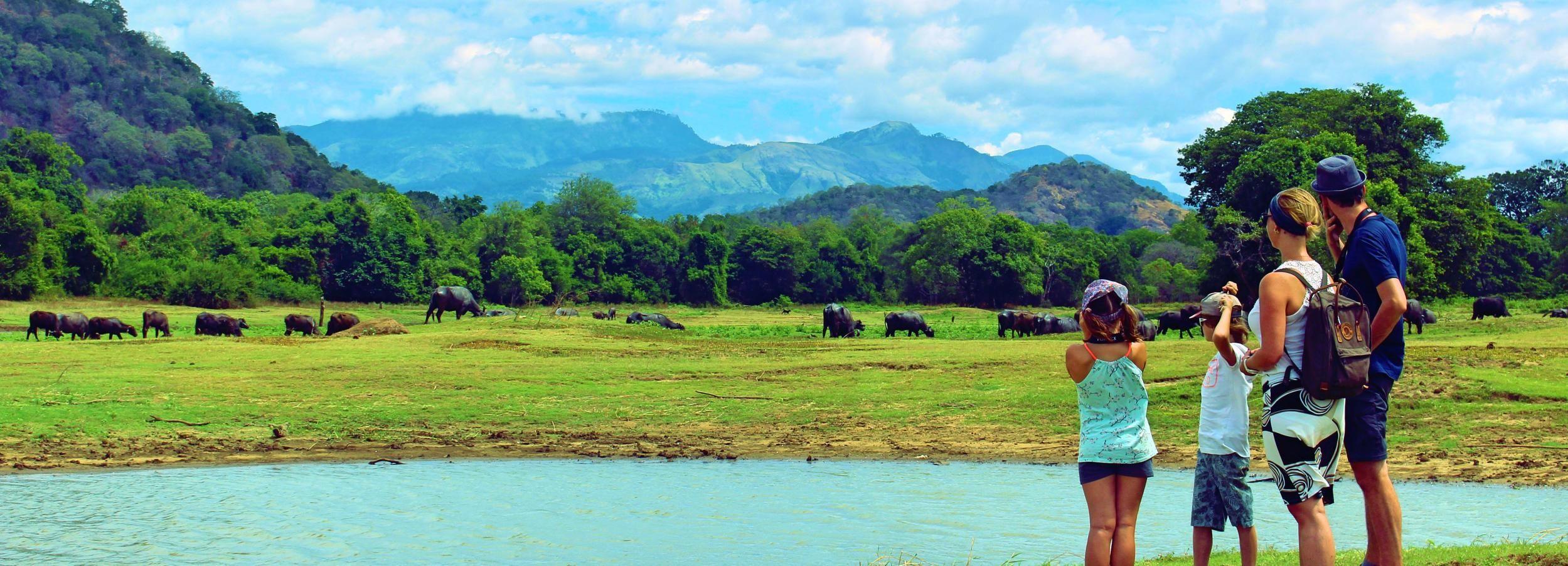 Sri Lanka: 5-Hour Guided Tour of Ella Village