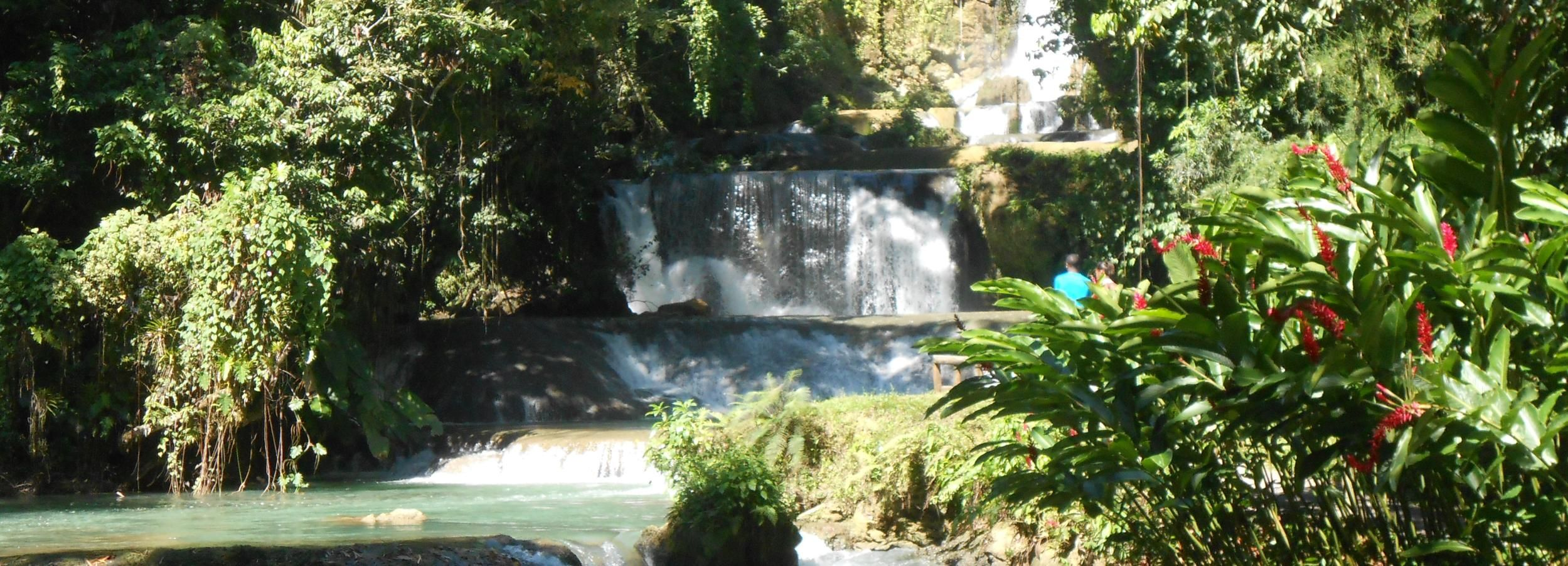 St Elizabeth: River Safari and Y.S. Falls with Lunch