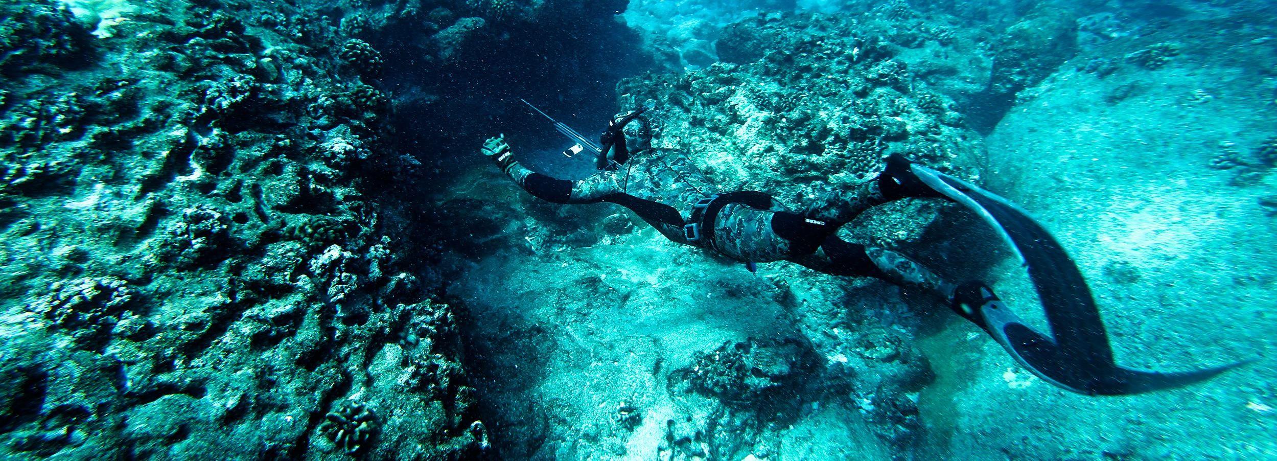 Cancun: Spearfishing-Erlebnis mit frischer Sashimi-Verkostung
