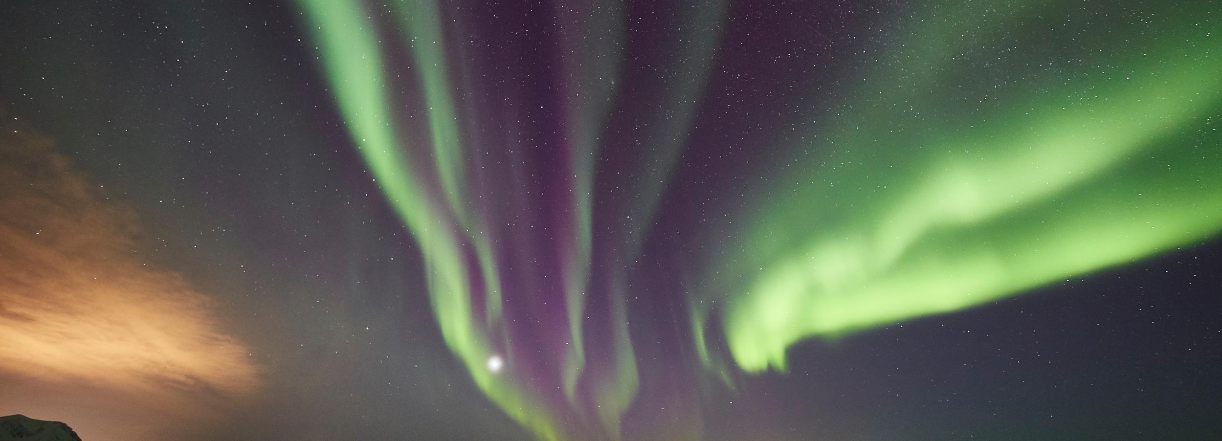 Tromsø: Private 6-Hour Aurora Chase van Minivan