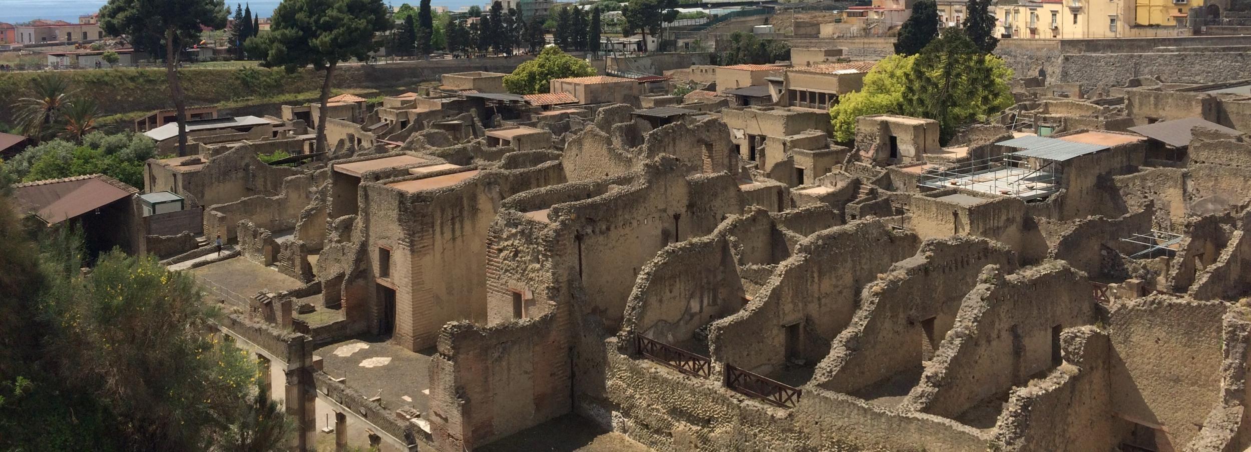 Visite privée de Pompéi et d'Herculanum avec billet coupe-file